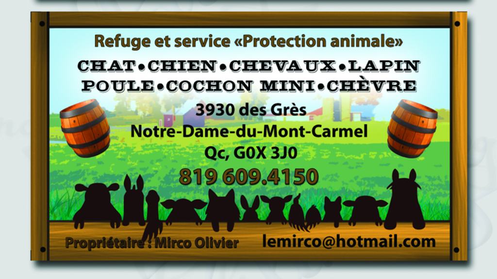 Le Ptit Ranch | store | 3930 Chemin du Rang des Grès, Notre-Dame-du-Mont-Carmel, QC G0X 3J0, Canada | 8196094150 OR +1 819-609-4150