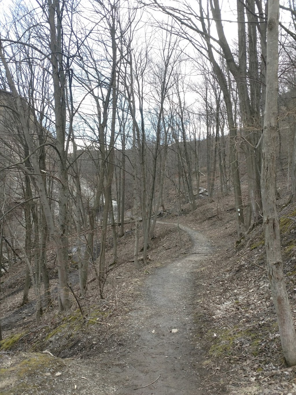 Bruce Trail Access Point | museum | &, Trevor Dr & Mountain Ave S, Stoney Creek, ON L8G 2P2, Canada