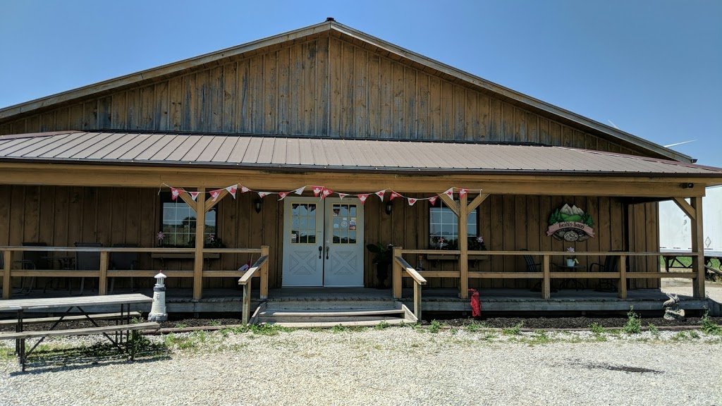 Dockside Fisheries | restaurant | 913 3rd Concession Line, Wheatley, ON N0P 2P0, Canada | 5198253474 OR +1 519-825-3474