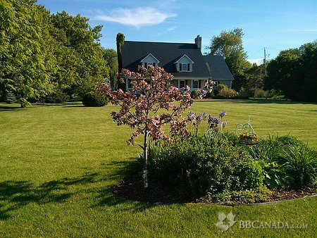 Crawford Inn Estate B&B   lodging   967 Essex County Rd 50, Harrow, ON N0R 1G0, Canada   5197383368 OR +1 519-738-3368