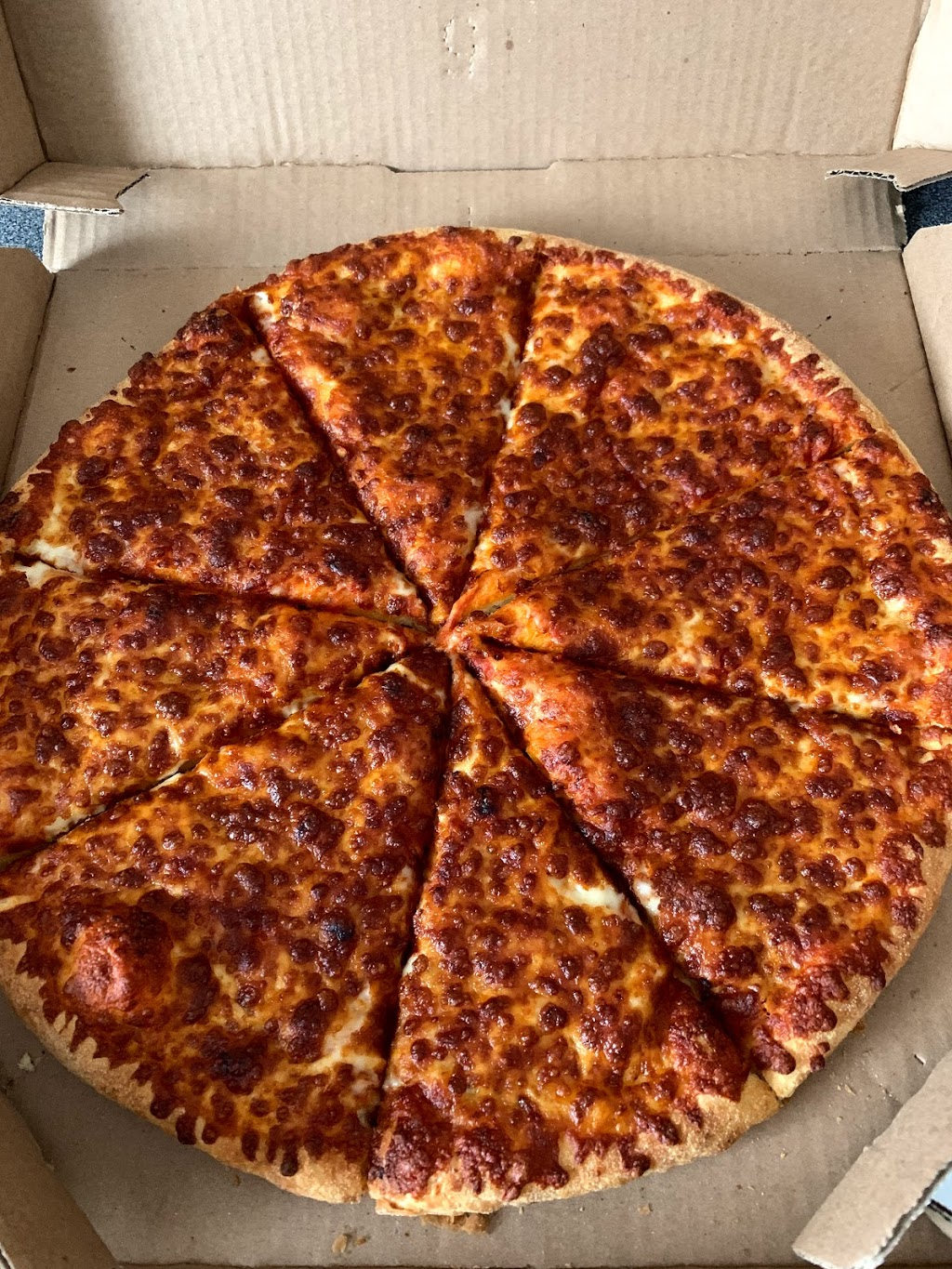 Dominos Pizza Meal Delivery 809 Victoria St N 11