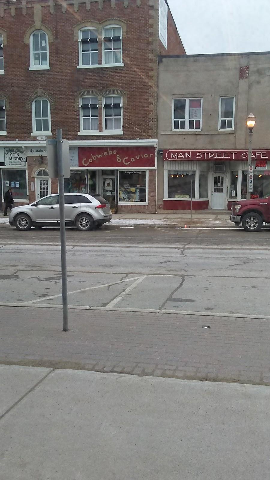 Cobwebs & Caviar   clothing store   147 Main St W, Shelburne, ON L9V 3K3, Canada   5193063000 OR +1 519-306-3000