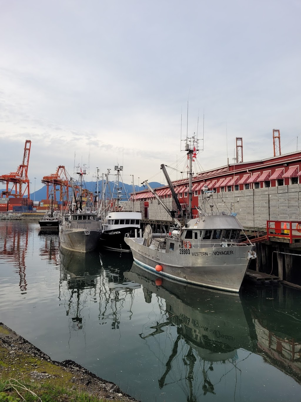 Canadian Fishing Company | point of interest | 301 E Waterfront Rd E, Vancouver, BC V6A 0B3, Canada | 6046810211 OR +1 604-681-0211