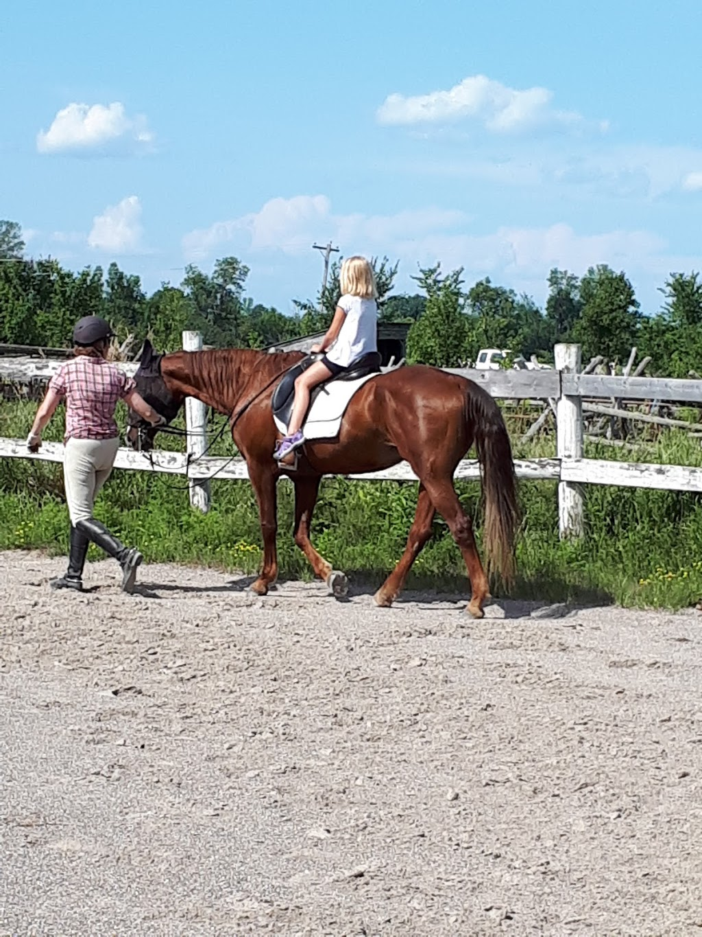 Fox Hollow Farm | point of interest | 4655 Appleton Side Rd, Almonte, ON K0A 1A0, Canada | 6138532134 OR +1 613-853-2134