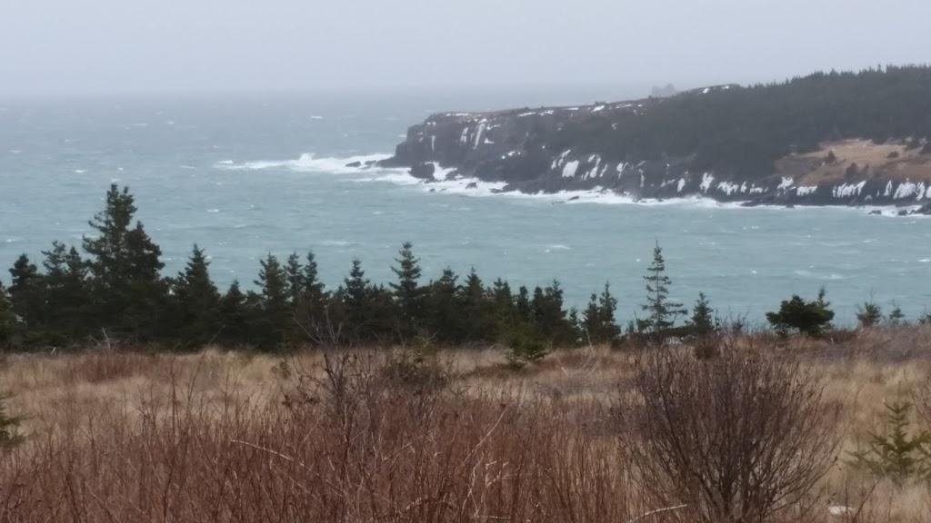 Ocean Walking Trails Bristols Hope | park | 320 Main Rd, Bristols Hope, NL A1Y 0A7, Canada