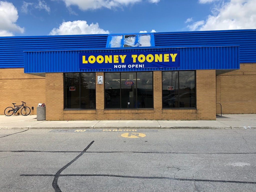 Looney Toonie | home goods store | 480 Smith St, Arthur, ON N0G 1A0, Canada