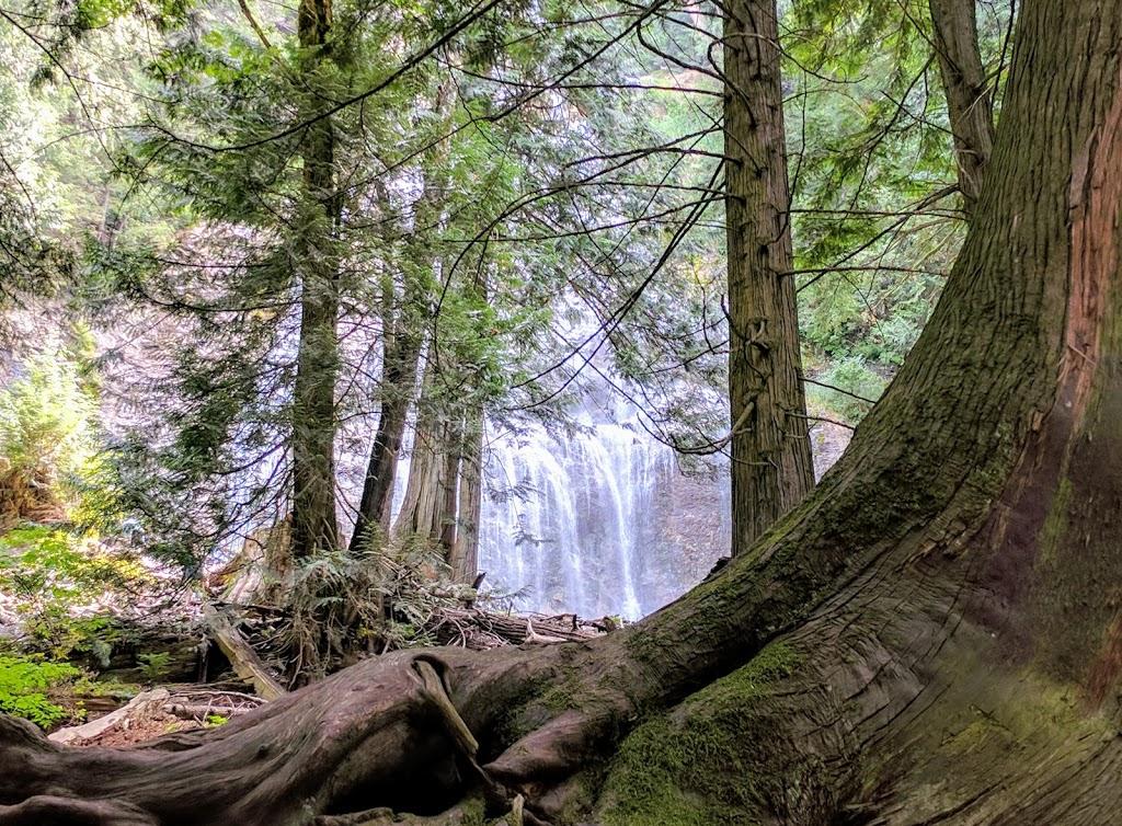 Bridal Falls Waterpark | amusement park | 53790 Popkum Rd S, Rosedale, BC V0X 1X1, Canada | 6047947455 OR +1 604-794-7455