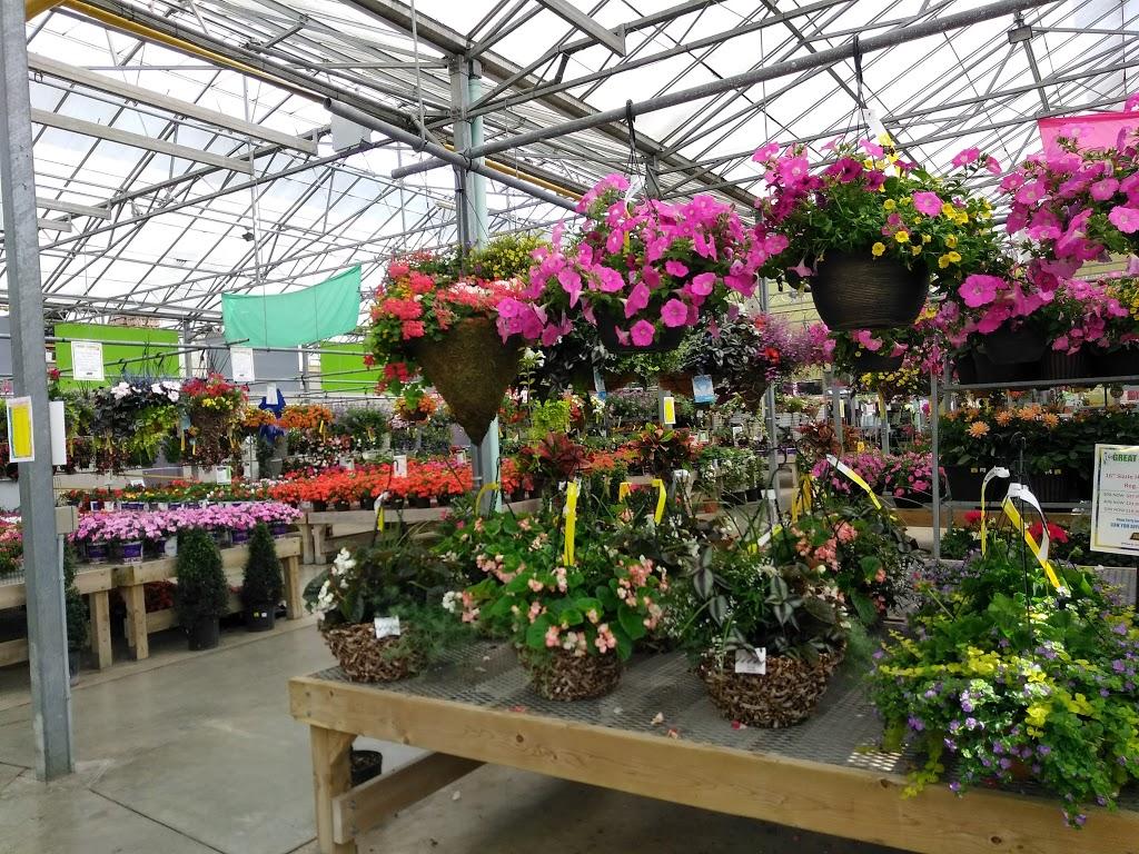 TERRA - Burlington | store | 2273 Halton Regional Rd 5, Burlington, ON L7R 3X4, Canada | 9053323222 OR +1 905-332-3222
