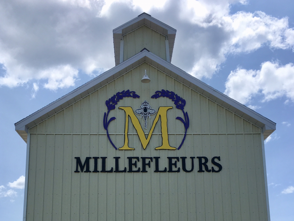 Millefleurs | florist | 17461 Loyalist Pkwy, Wellington, ON K0K 3L0, Canada | 6137451602 OR +1 613-745-1602