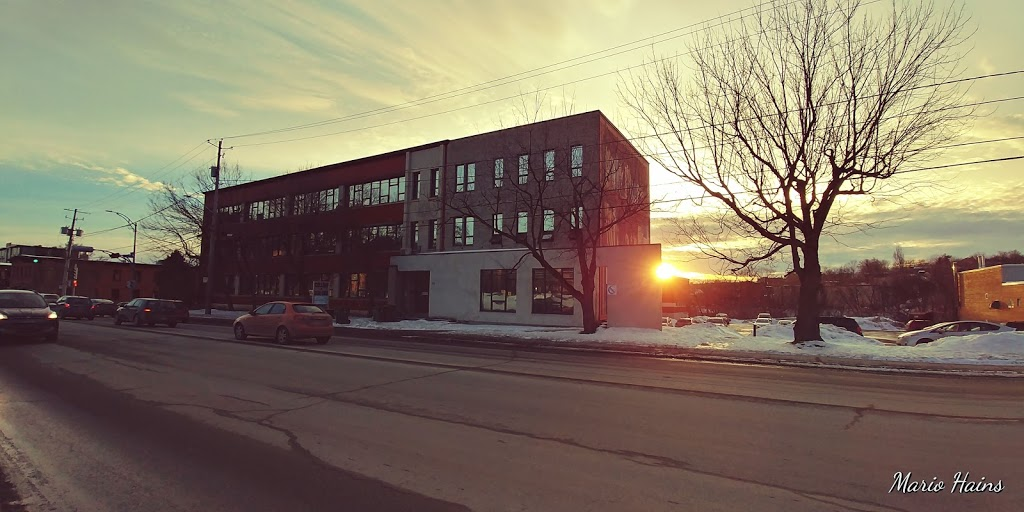 Collège Du Sacré-Coeur | school | 155 Rue Belvédère N, Sherbrooke, QC J1H 4A7, Canada | 8195699457 OR +1 819-569-9457