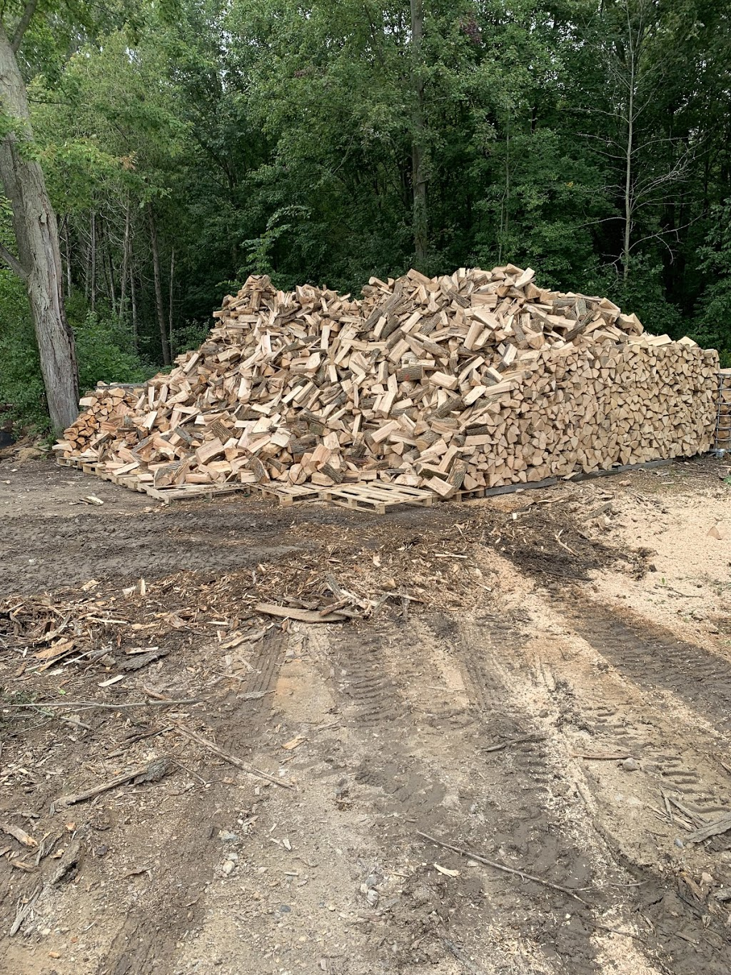 Riley Goetz Firewood   point of interest   6640 Fife Rd, Guelph, ON N1H 6J4, Canada   5196162972 OR +1 519-616-2972