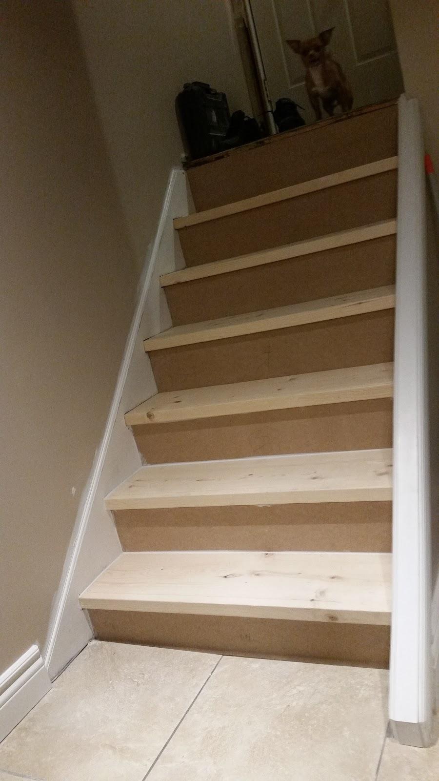 Cruzz Construction | home goods store | 3 Lasila Ct, Hamilton, ON L9C 7B6, Canada | 2893086563 OR +1 289-308-6563