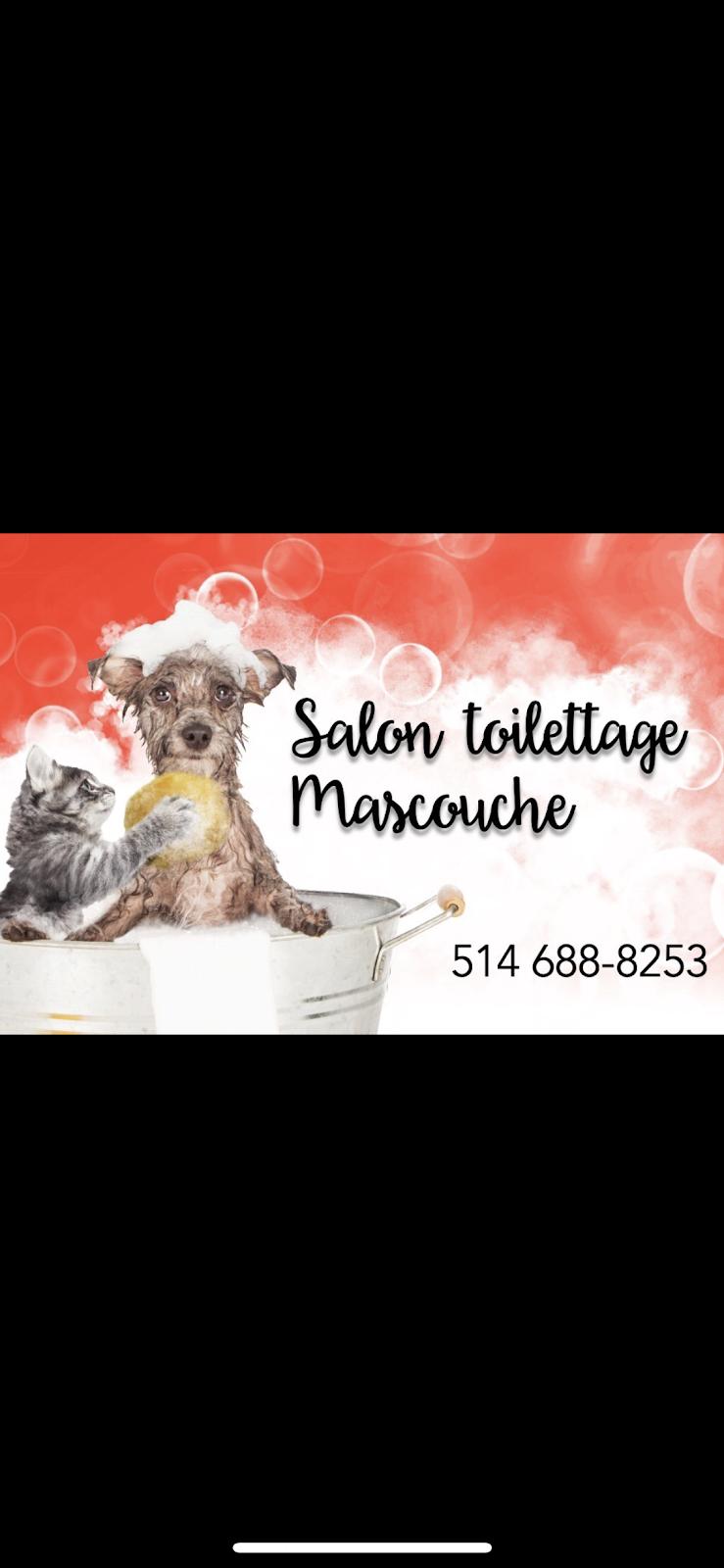 Salon toilettage mascouche   pet store   2741 Chemin Ste Marie, Mascouche, QC J7K 1N2, Canada   5146888253 OR +1 514-688-8253