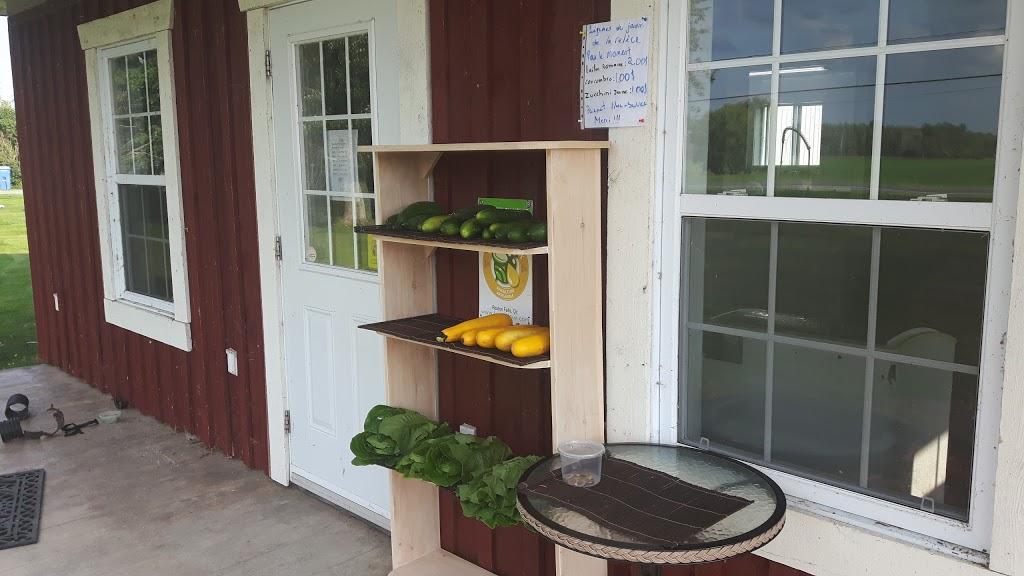 Les Trouvailles Gourmandes du Canton | store | 917 11e Rang, Roxton Falls, QC J0H 1E0, Canada | 4505312308 OR +1 450-531-2308