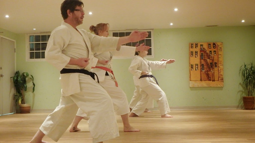 Traditional Karate Saskatoon | health | 1527 Alexandra Ave, Saskatoon, SK S7K 3C1, Canada | 3067170886 OR +1 306-717-0886