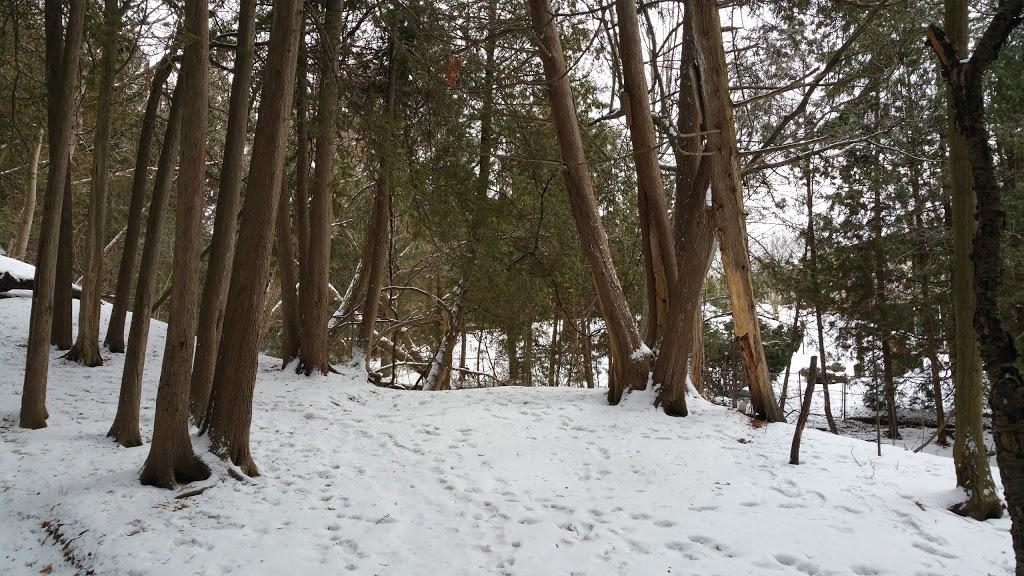 Baker Park | park | 151 Baker Ct, Oshawa, ON L1G 7N2, Canada