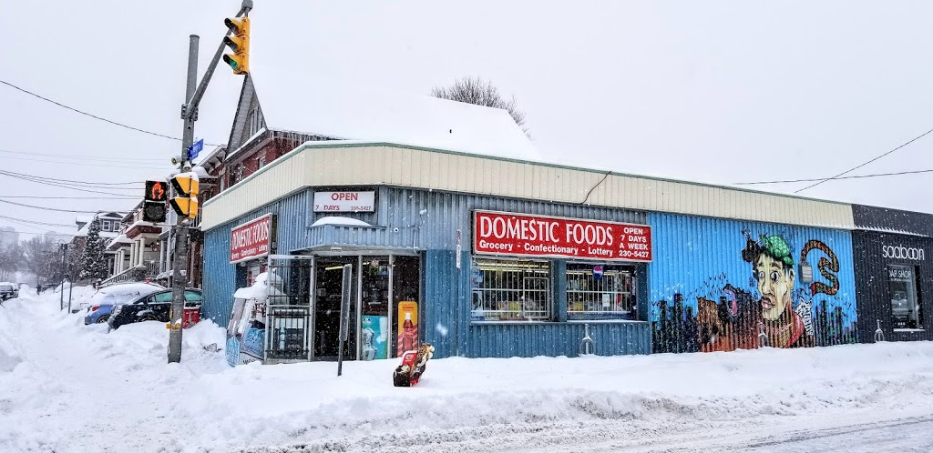 Domestic Foods | convenience store | 595 Gladstone Ave, Ottawa, ON K1R 5P2, Canada | 6132305427 OR +1 613-230-5427