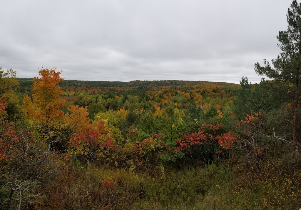 Fleetwood Creek Natural Area Lookout Trail | park | 902 Ballyduff Rd, Pontypool, ON L0A 1K0, Canada | 7053282271 OR +1 705-328-2271