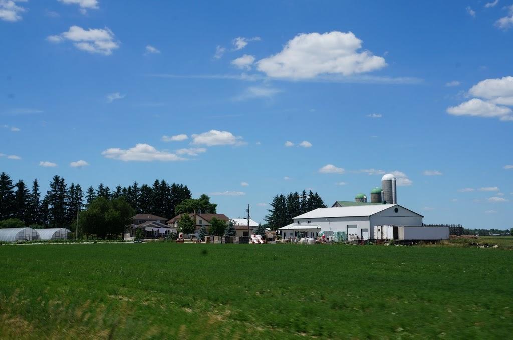 Irrigation Plus | point of interest | 1575 Scotch Line Rd, Elmira, ON N3B 2Z2, Canada | 5196641400 OR +1 519-664-1400