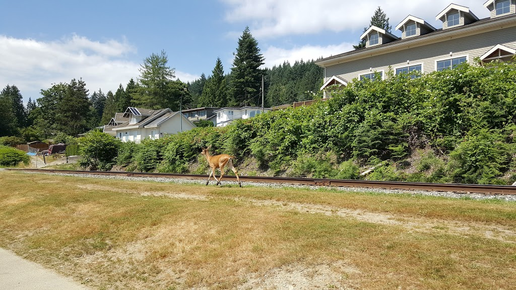 Old Orchard Park | park | 600 Bentley Rd, Port Moody, BC V3H 2W6, Canada | 6044694552 OR +1 604-469-4552