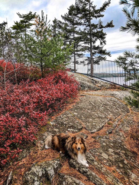 Nova Scotia Parks   park   4949 Nova Scotia Trunk 2, Wellington, NS B2T 1B8, Canada   9028611623 OR +1 902-861-1623