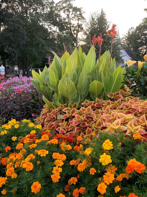Apeldoorn Park   park   1385 Elgin St, Burlington, ON L7S 1E4, Canada   9053321996 OR +1 905-332-1996
