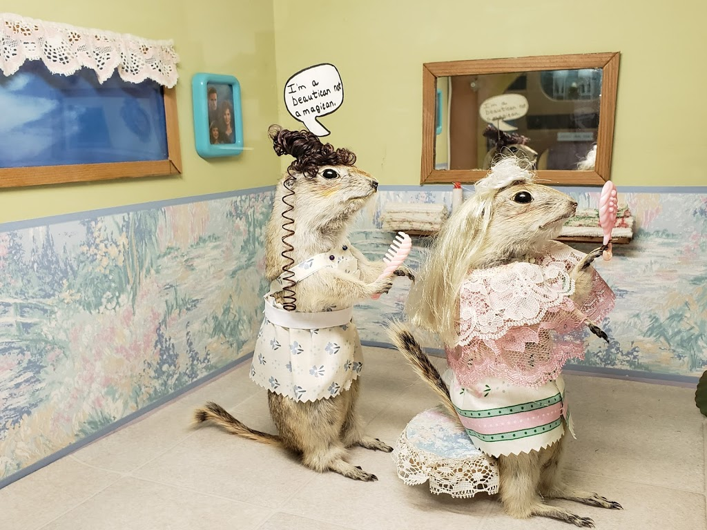 World Famous Gopher Hole Museum   museum   208 1 St SW, Torrington, AB T0M 2B0, Canada   4036312133 OR +1 403-631-2133