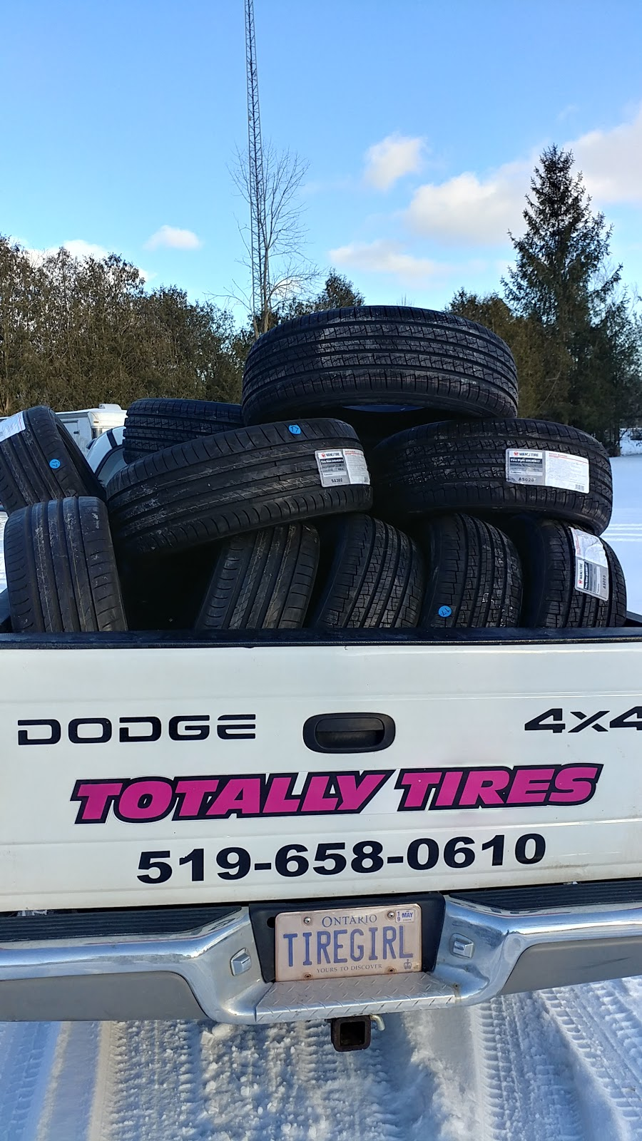 Totally Tires Inc | car repair | 111 Robinson Rd, Cambridge, ON N1R 5S7, Canada | 5196580610 OR +1 519-658-0610