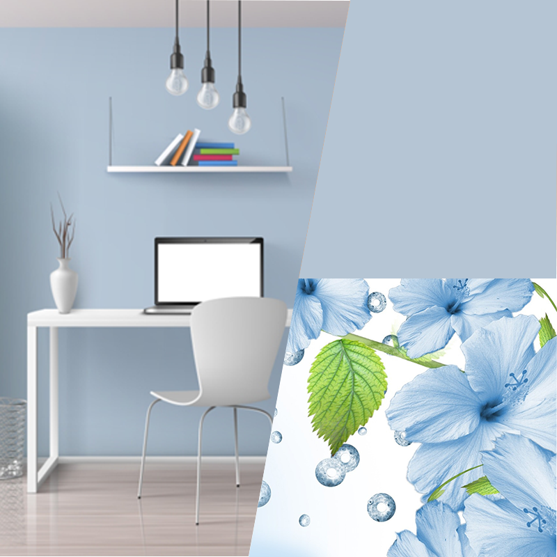 XYZ Painting & Drywall - Best Vancouver Painting Companies | painter | 7026 Prince Edward St, Vancouver, BC V5X 3P4, Canada | 7788000705 OR +1 778-800-0705