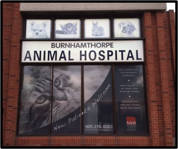 Burnhamthorpe Animal Hospital | veterinary care | 600 Burnhamthorpe Rd W, Mississauga, ON L5B 2C4, Canada | 9052764083 OR +1 905-276-4083