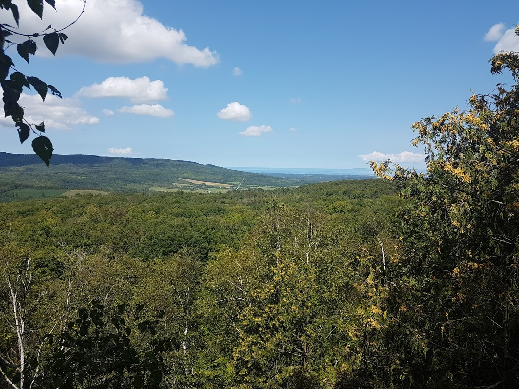 Nottawasaga Lookout Provincial Nature Reserve | park | 9749 County Rd 91, Duntroon, ON L0M 1H0, Canada | 7054292516 OR +1 705-429-2516