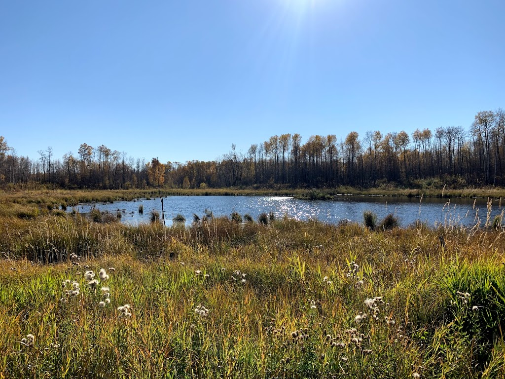 Ministik Lake Game Bird Sanctuary | park | Unnamed Road, Hay Lakes, AB T0B 1W0, Canada | 7804647955 OR +1 780-464-7955