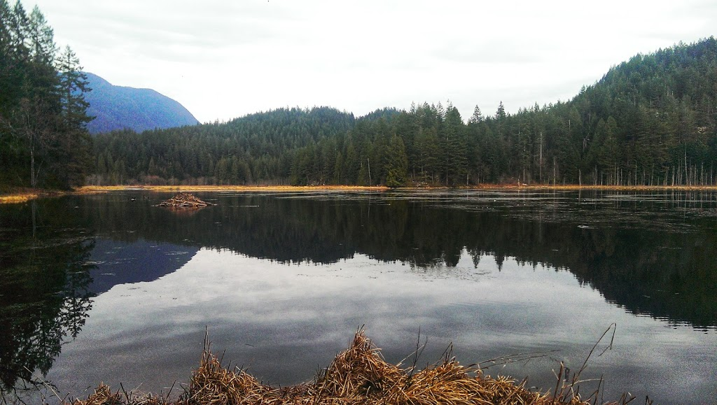 High Knoll Lookout | park | High Knoll Trail, Coquitlam, BC V3E 3H6, Canada