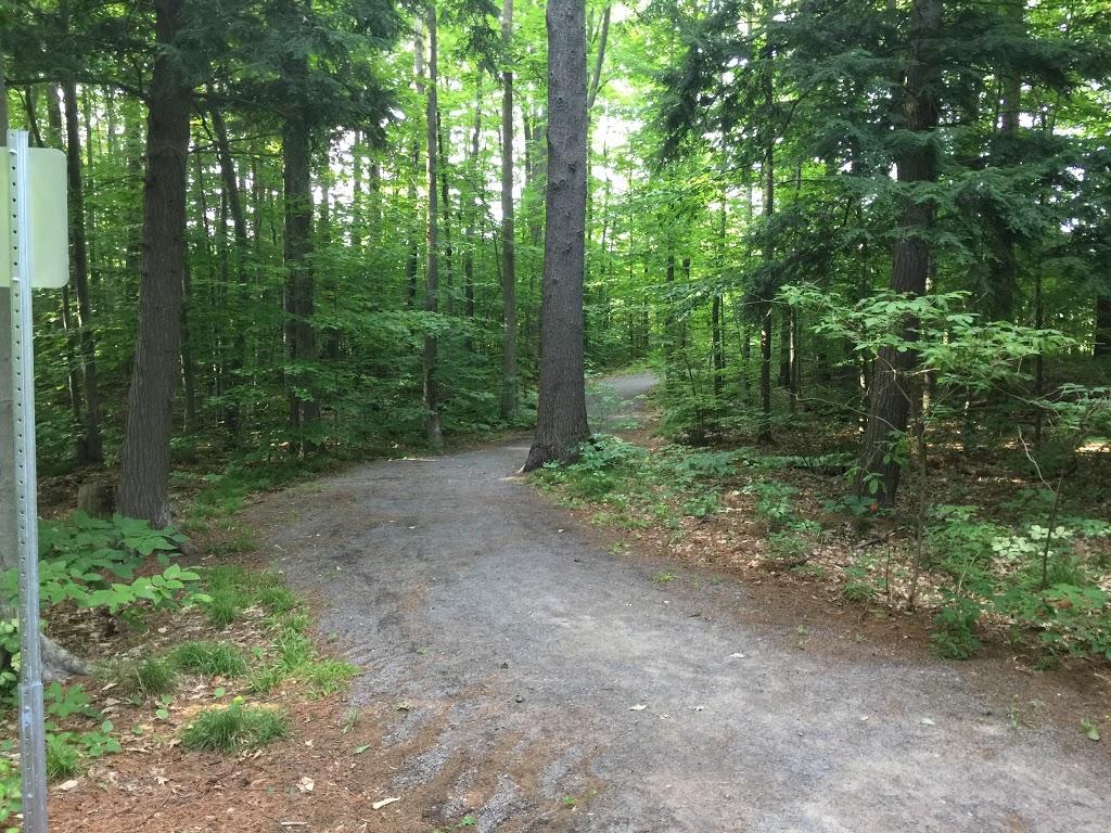 Parc de la Rhapsodie   park   Rue de la Rhapsodie, Saint-Lazare, QC J7T 3J6, Canada