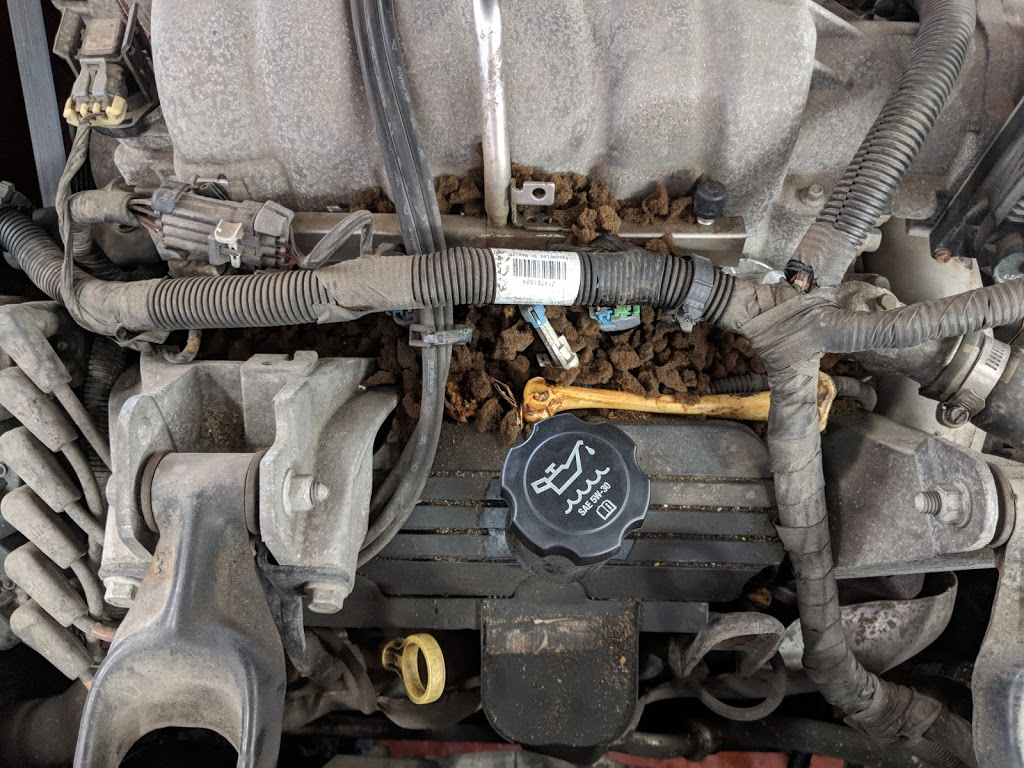 Speedy Auto Works | car repair | 277 Hespeler Rd, Cambridge, ON N1R 3H8, Canada | 5196231774 OR +1 519-623-1774