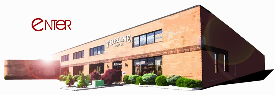 Topline Living Inc 6895 Pacific Cir Mississauga On L5t 2h3 Canada