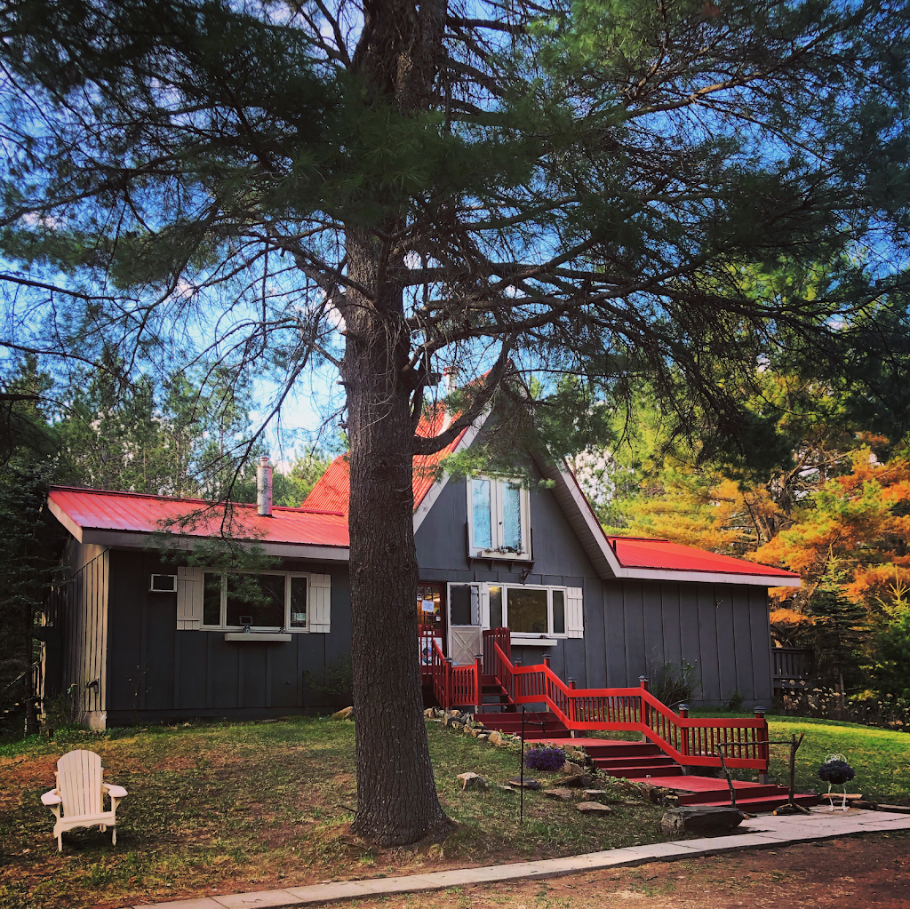 Algonquin Pines Campground | campground | 2883 ON-60, Dwight, ON P0A 1H0, Canada | 7053887148 OR +1 705-388-7148
