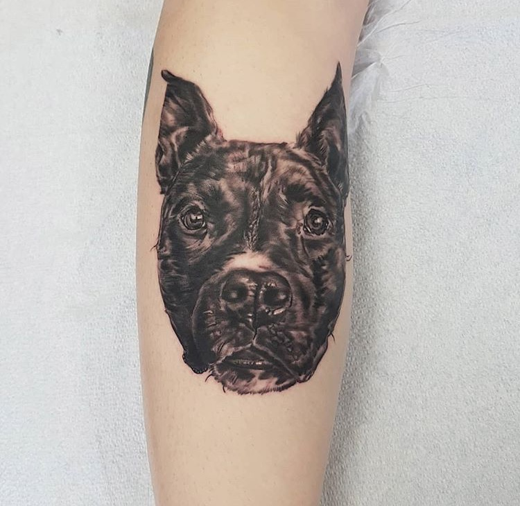 Lyle Street Tattoo Company | store | 66 Lyle St, Dartmouth, NS B3A 2Z9, Canada | 9024690861 OR +1 902-469-0861