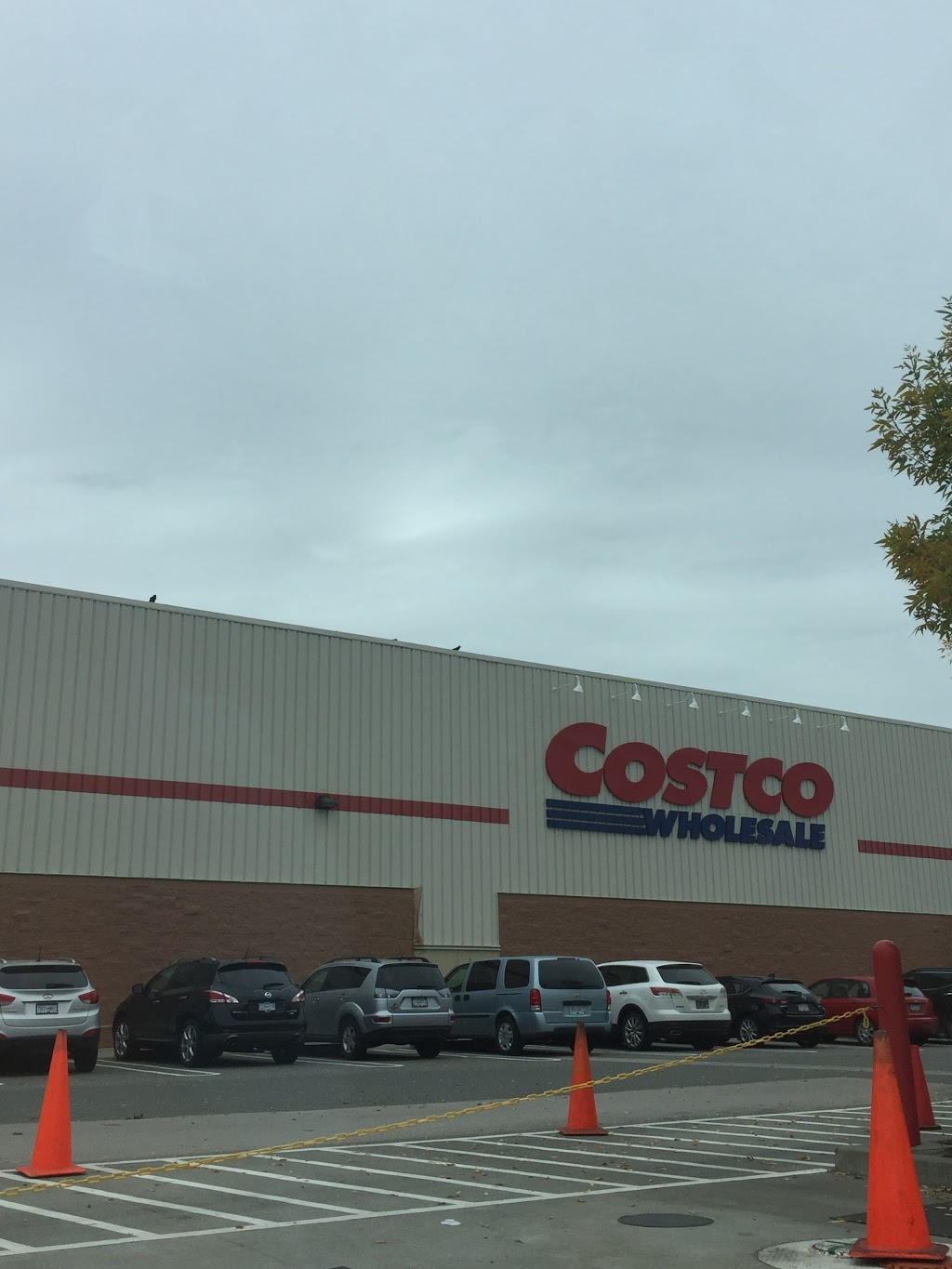 Costco Gasoline | gas station | 20499 64 Ave, Langley City, BC V2Y 1N5, Canada | 6045398901 OR +1 604-539-8901