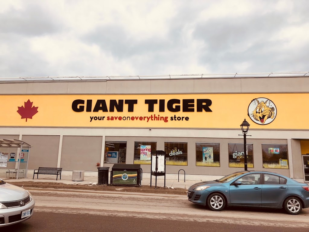 Giant Tiger   department store   811 Princess St, Kingston, ON K7L 1G6, Canada   6135475128 OR +1 613-547-5128