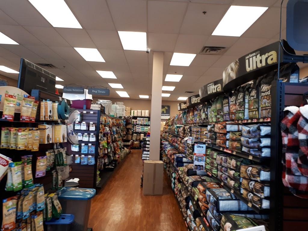 Pet Valu | pet store | 363 Kent St W, Lindsay, ON K9V 2Z7, Canada | 7058780821 OR +1 705-878-0821