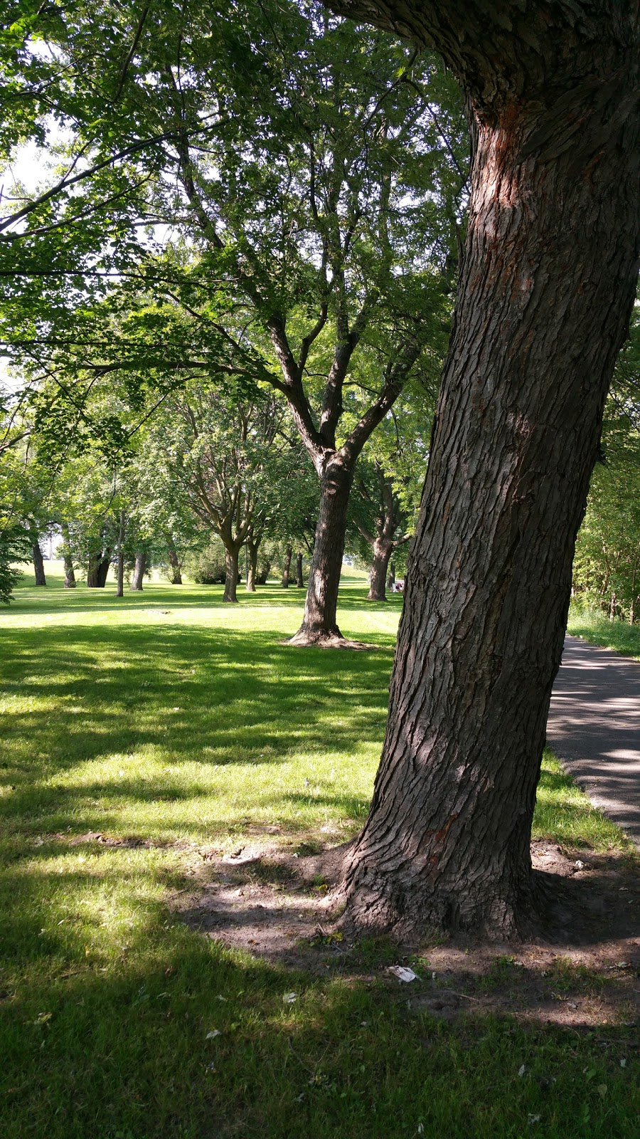 Brick By Brick Park | park | Vanier, Oshawa, ON L1J, Canada